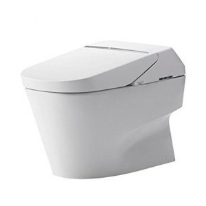 Incredible Best All In One Combined Bidet Toilet Evergreenethics Interior Chair Design Evergreenethicsorg